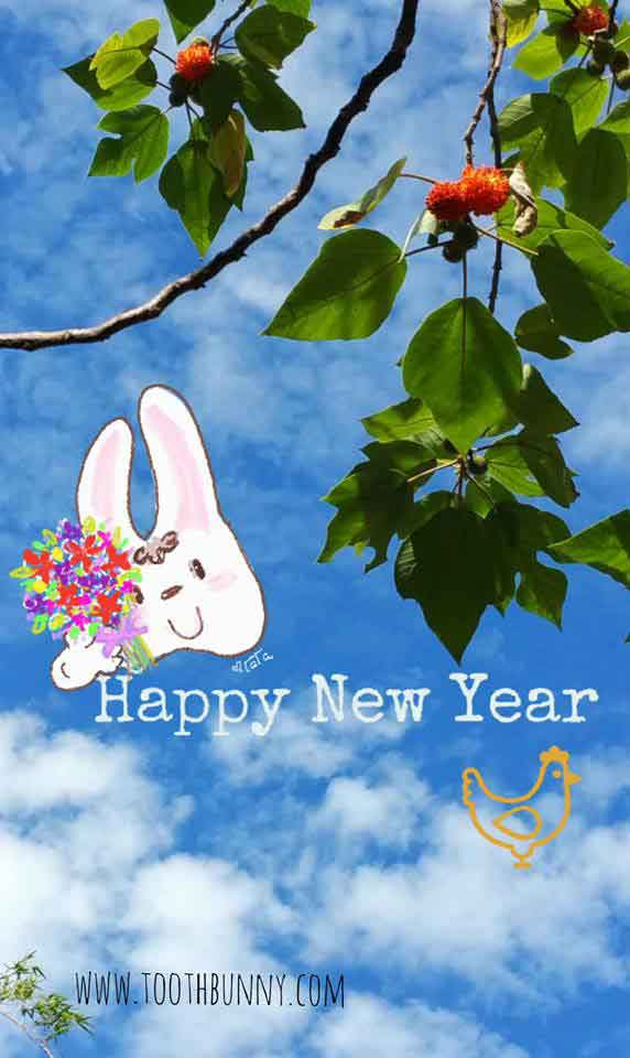 Happy New Year from Tooth Bunny and Friends