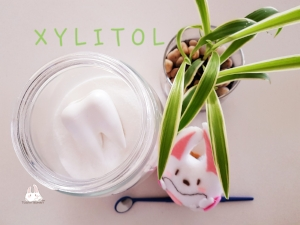 Xylitol_Tooth Bunny Dr Annetta Tsang