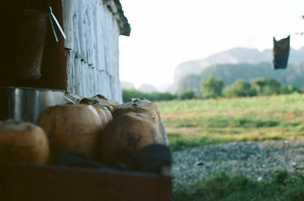Click here for 35mm photography of Viñales, Cuba