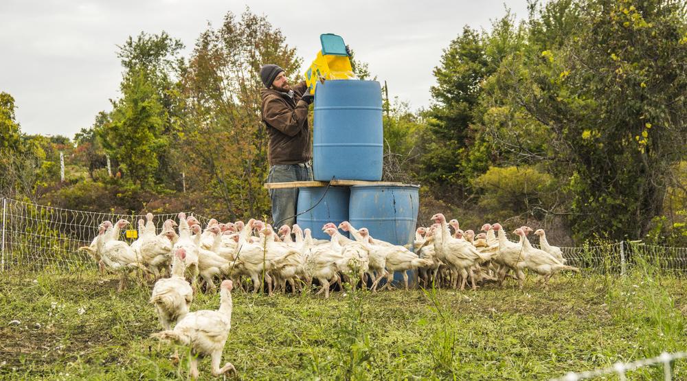 farmers_banner.jpg