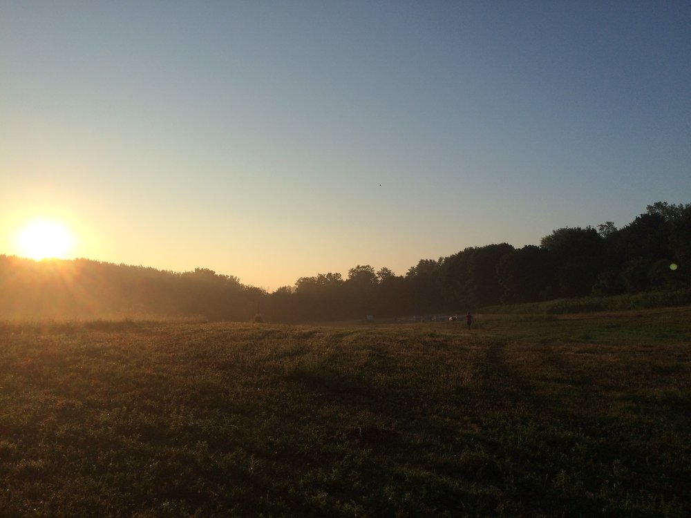 pasture_sunrise_Aug16.JPG