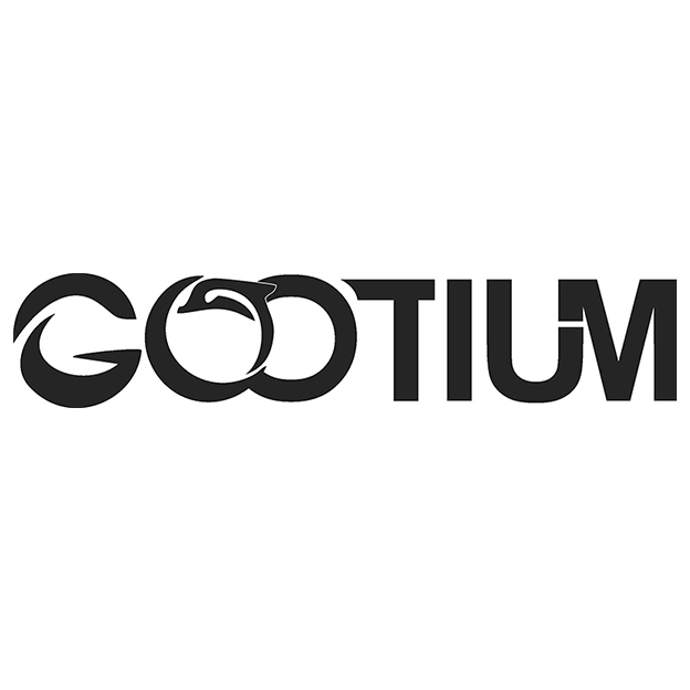 gootium-bags-accessories_myshopify_com_logo.jpg