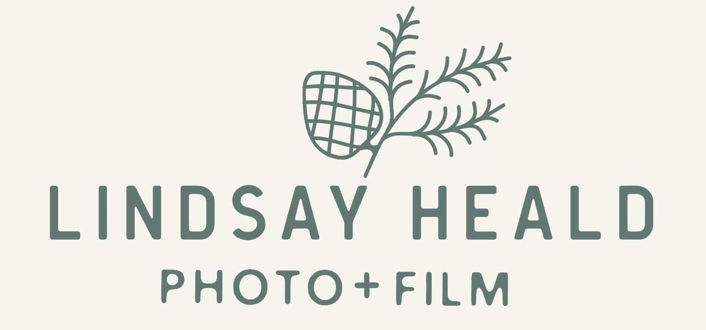 lindsay heald wedding visuals
