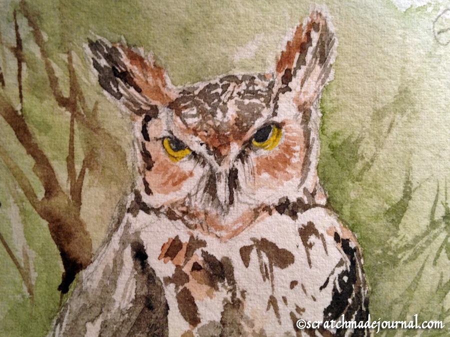 great horned owl face detail - scratchmadejournal.com