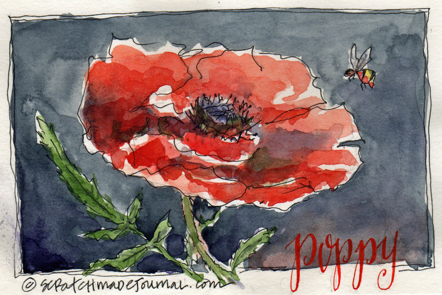 poppy flower watercolor sketch - scratchmadejournal.jpg