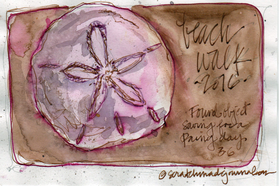 sand dollar watercolor sketch - scratchmadejournal.com