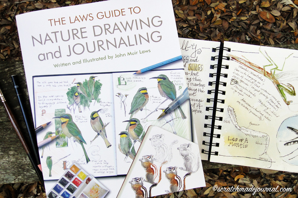 Laws Guide to Nature Journaling Review - scratchmadejournal.com