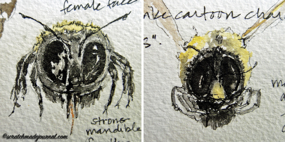 Bees unique faces watercolor sketches - scratchmadejournal.com