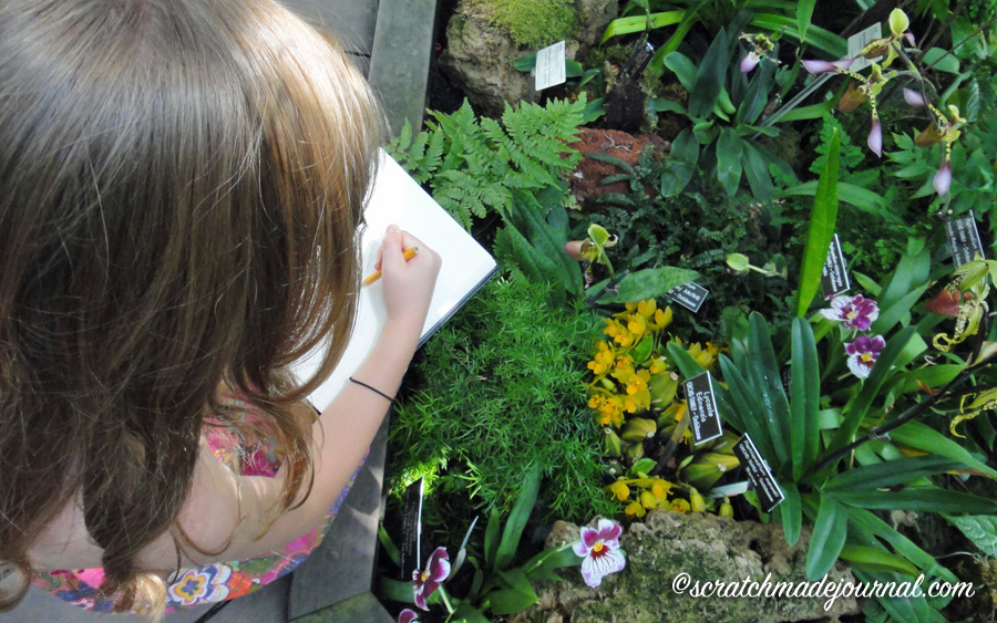 Recommended supplies for nature journaling with kids - ScratchmadeJournal.com