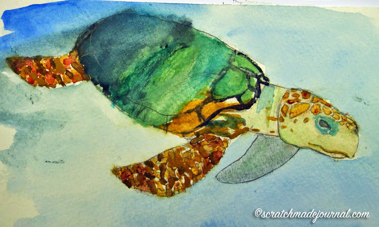 Daughter's beginning watercolor studies as she observed a Loggerhead sea turtle.