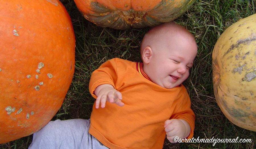 Even a very young child can be allowed to explore by rolling in the prickly grass and beating on the hollow drum of a pumpkin, grasping its woodsy stem and tasting its soft meat.