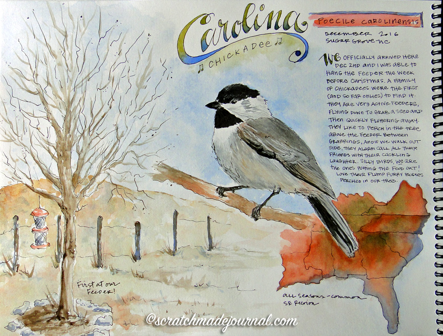 Carolina Chickadee birding journal page plus tips on keeping a bird watching journal - scratchmadejournal.com