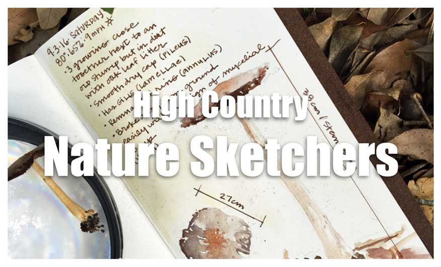 High Country Nature Sketchers club is beginning in Boone! - scratchmadejournal.com