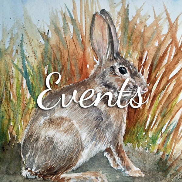 Learn watercolor, art journaling, lettering & more at events with ScratchmadeJournal.com