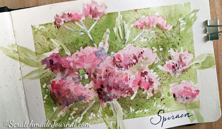 Hahnemühle Watercolour Book Review — Scratchmade Journal