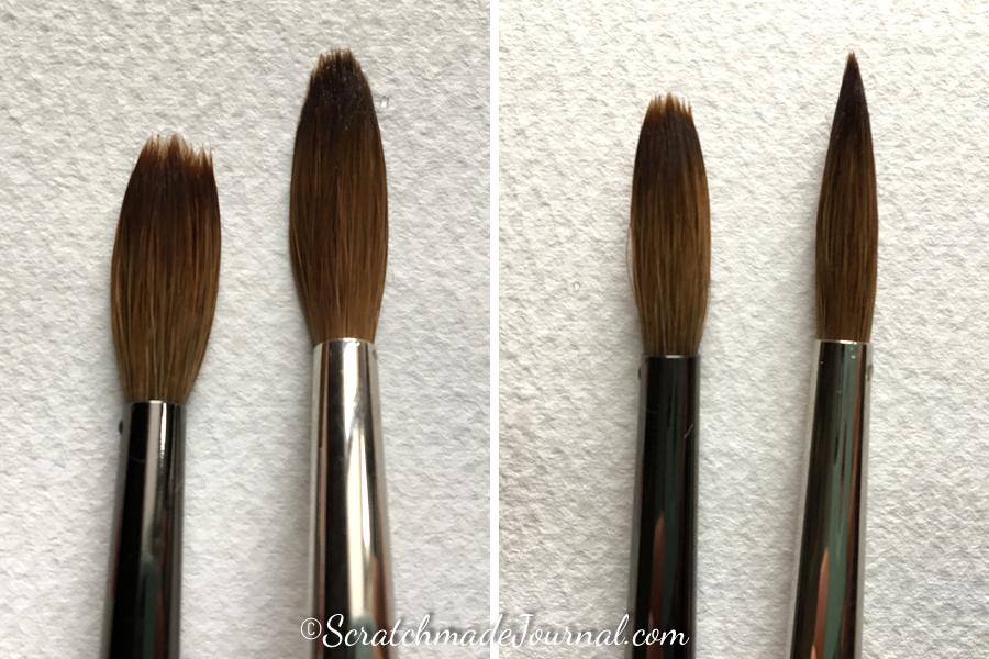 Comparing a kolinsky sable watercolor brush versus a sable blend - ScratchmadeJournal.com