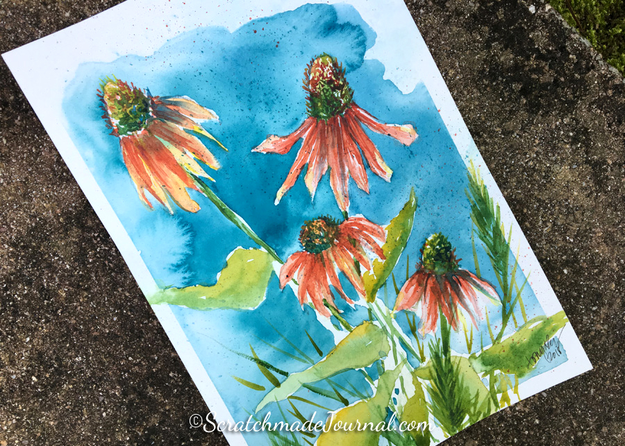 Peach pink Echinacea cone flowers watercolor painting on Hahnemühle Harmony - ScratchmadeJournal.com