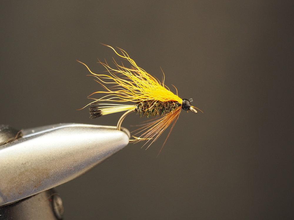 Orange Wing Pass Lake Special