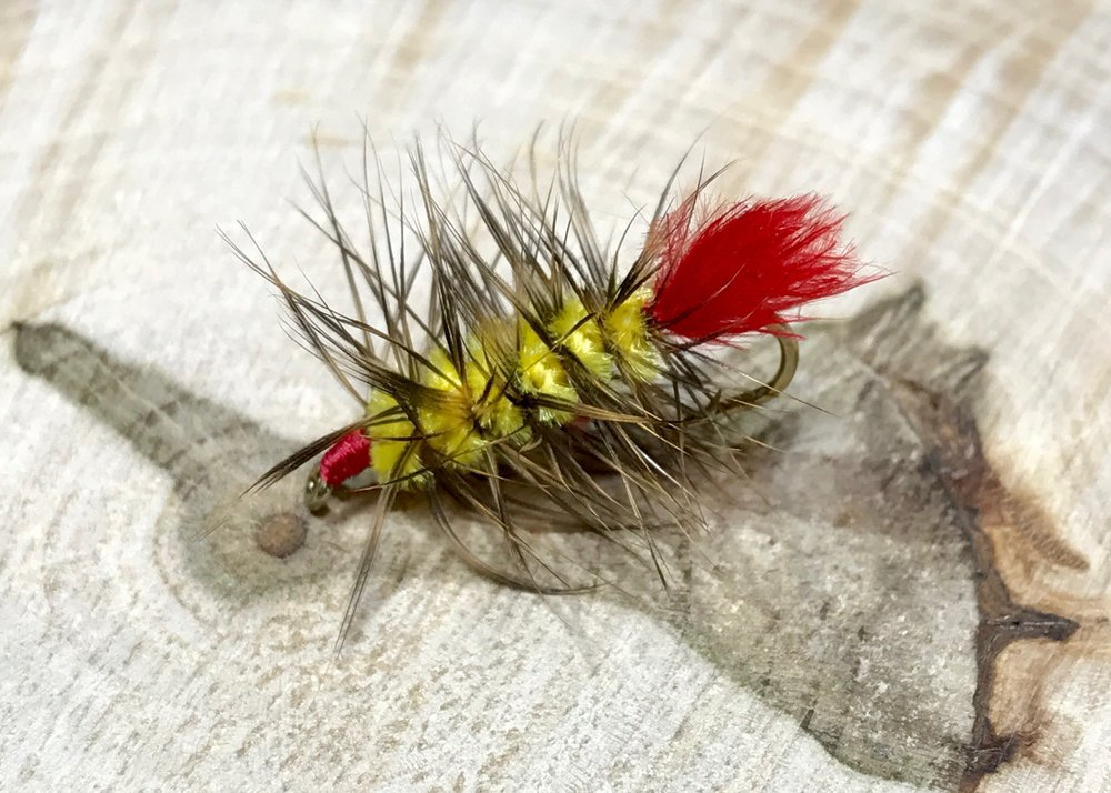 Chartreuse may not imitate anything in the bluegills world, but they cant resist it.
