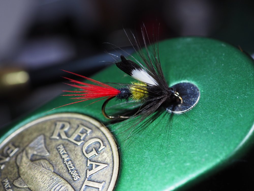 My version of a McGinty Wet Fly