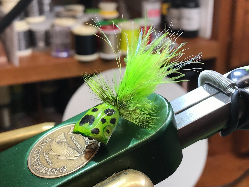 This frog colored popper started out as a white pre-formed popper body.