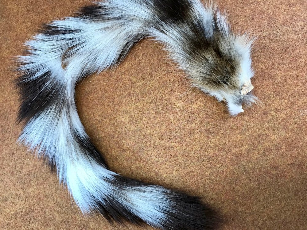 Monga ringtail may be difficult to source so feel free to substitute a mix of black and white bucktail.