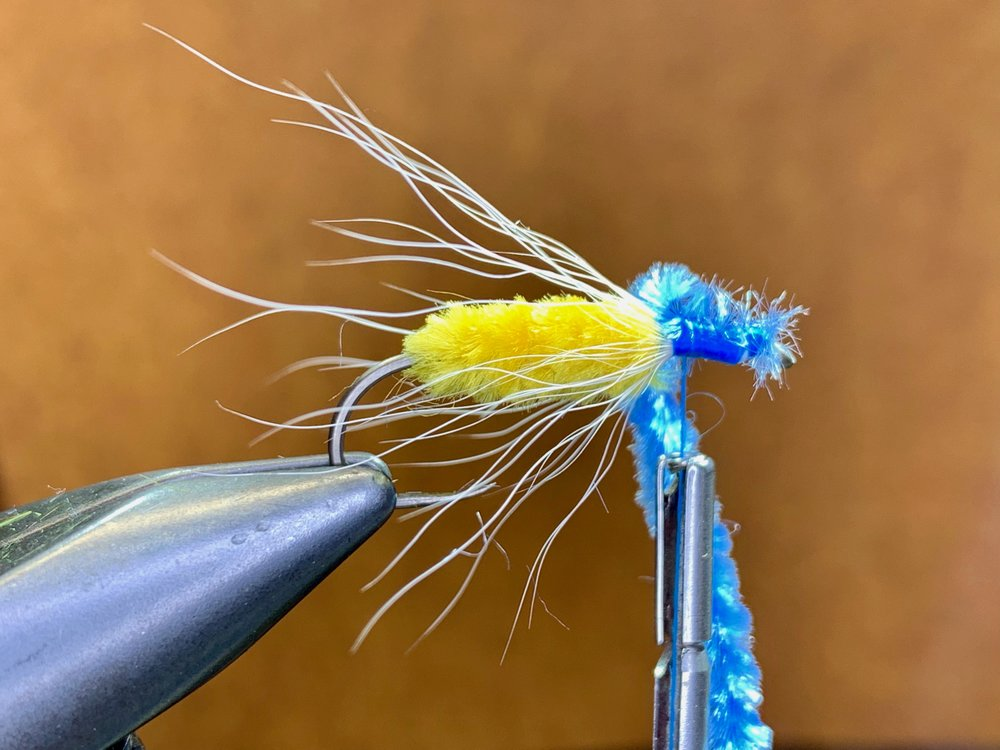 Step 8 - Tie in the blue chenille. I tie it in at the eye and lash it down by wrapping back towards the wing. Then advance your thread back towards the eye. This will continue to add bulk to this portion of the hook shank resulting in a head that is larger than the body.