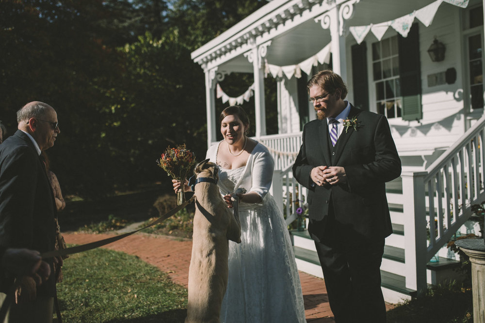 cherry hill farmhouse dog sees bride.jpg