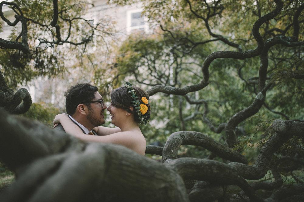 cylburn arboretum baltimore wedding cool tree.jpg