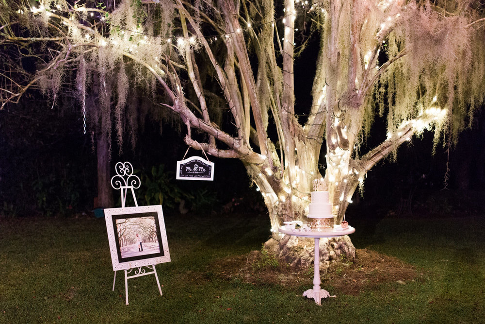 Lighted tree for wedding reception, dessert table