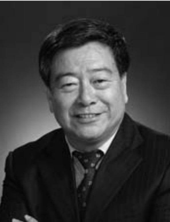 Shi Dinghuan Chairman, China Renewable Energy Society & Counselor of the State Council