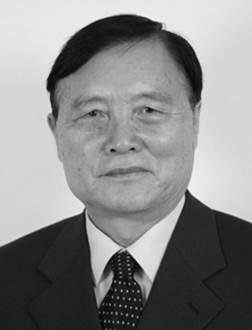 Zhou Xiaoxin Chief Engineer, Chinese Electric Power Research Institute