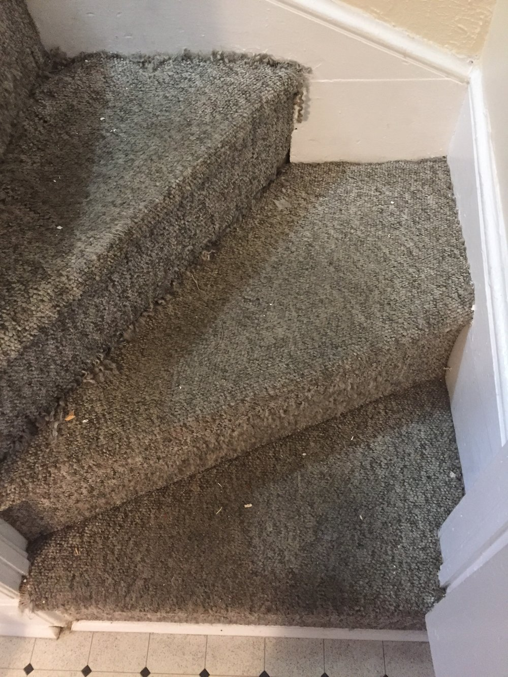 Stairs with carpet. No amount of cleaning can restore this carpet.