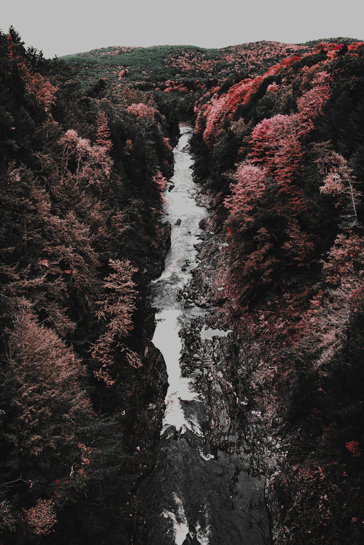 Gorge-(1-of-1).jpg