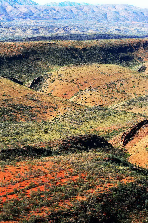 Pacoota ranges
