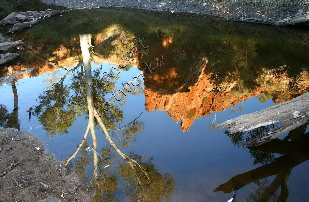 Reflections Birthday waterhole