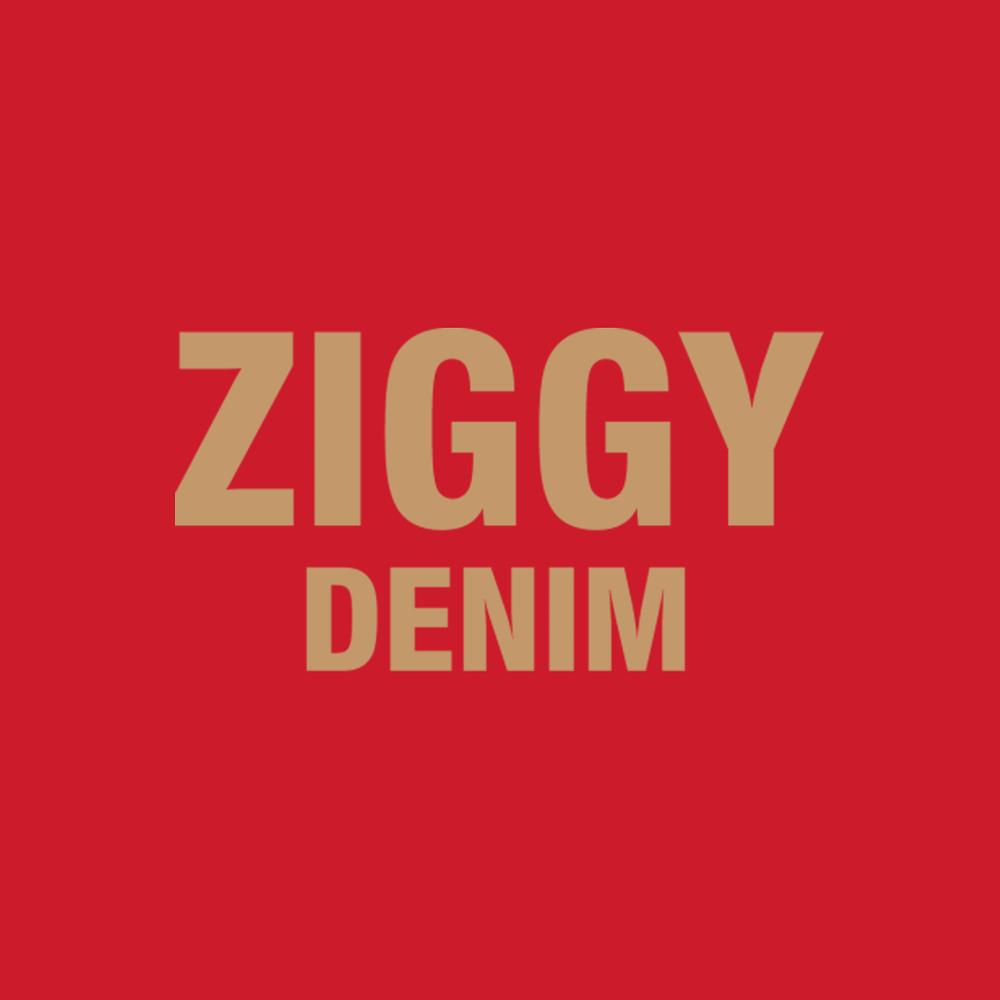 Ziggy-Denim.png