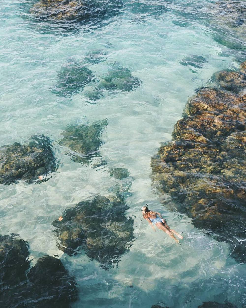 s-ea-life: apodyoopsis: Tropical Bliss ☼ sea's the day
