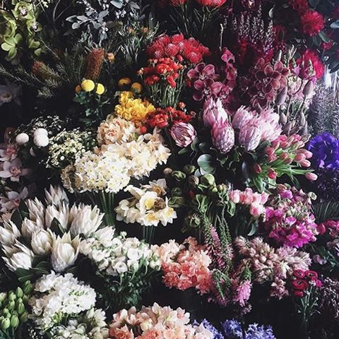 Happy Sunday! Fleurs for days 📷 via @figandsalt #sunday #fleurs #love