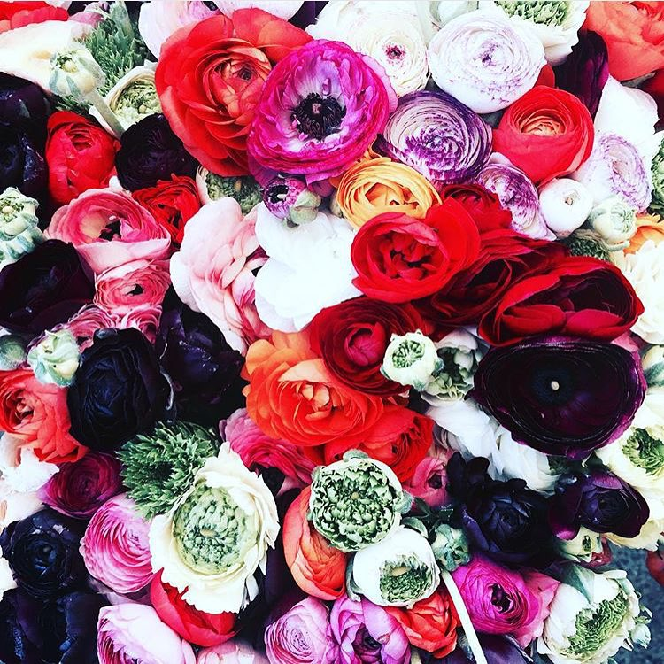 Weekend colours #freshfleurs #inspiration