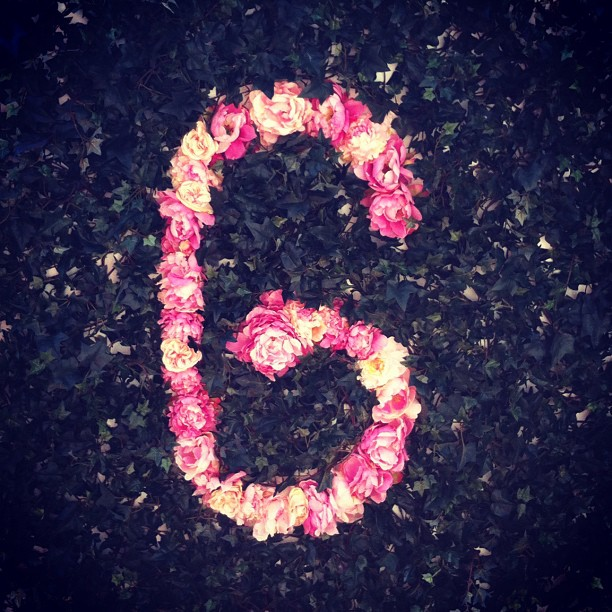 We love seeing our name in flowers! Our amazing floral board by Fleur in Armadale! #graceis5 (at Grace)