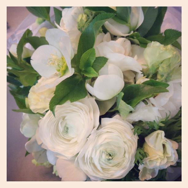 Ilana's beautiful early birthday flowers, fromFleurin Armadale. LOVE!