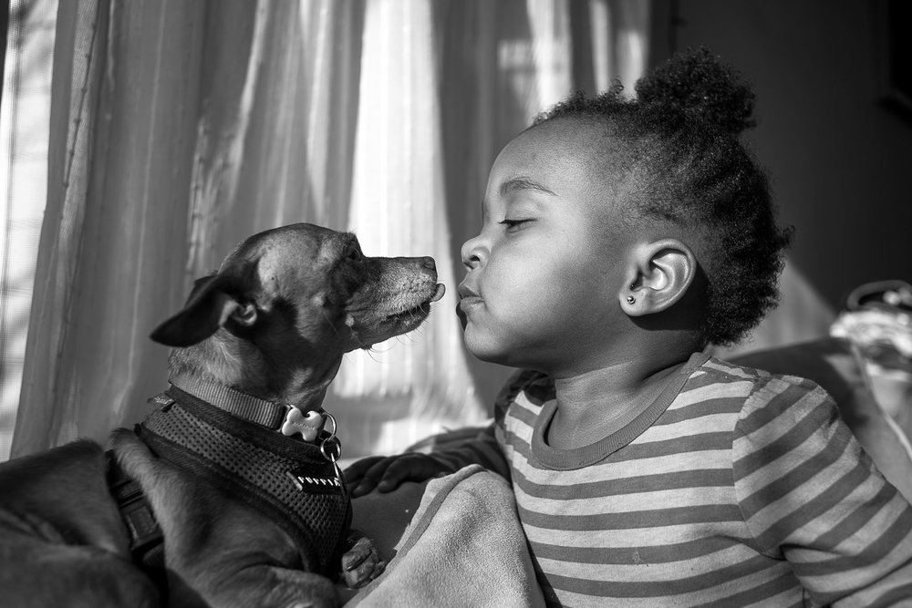 Toddler girl and her dog - Slice of Love Photography - Bay Area Family Photographer