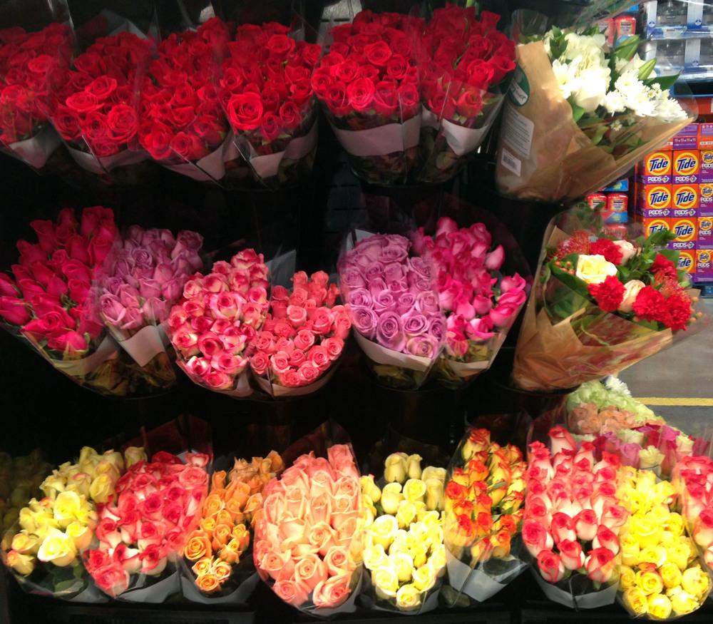bp1 roses cropped.jpg