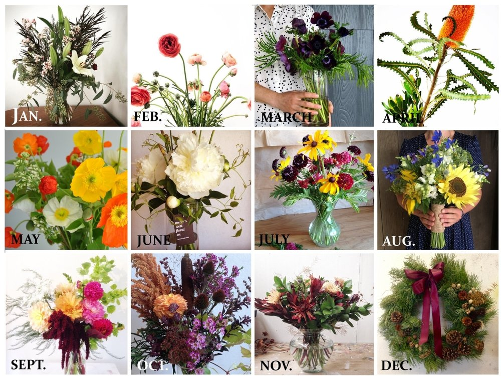 Flower of the Month Club Montage.jpg