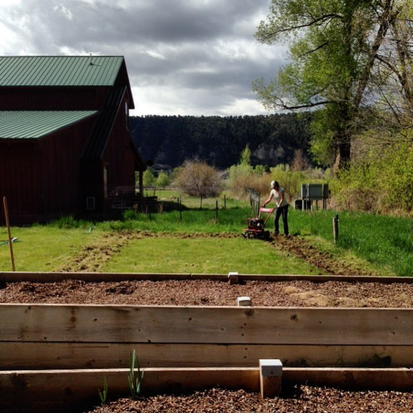 "Breaking ground for Phase I of our flower ""farm"". Total acreage: .0165! or 720 square feet."