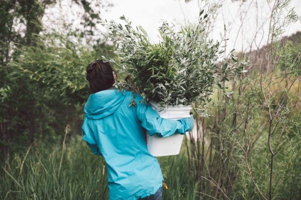 Tara and a bucket of russian olive and willow-soon to be part of her own wedding bouquet.