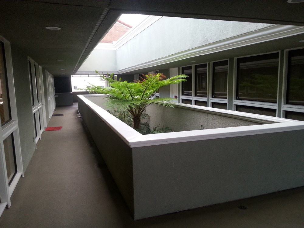 Dental office building upstairs courtyard