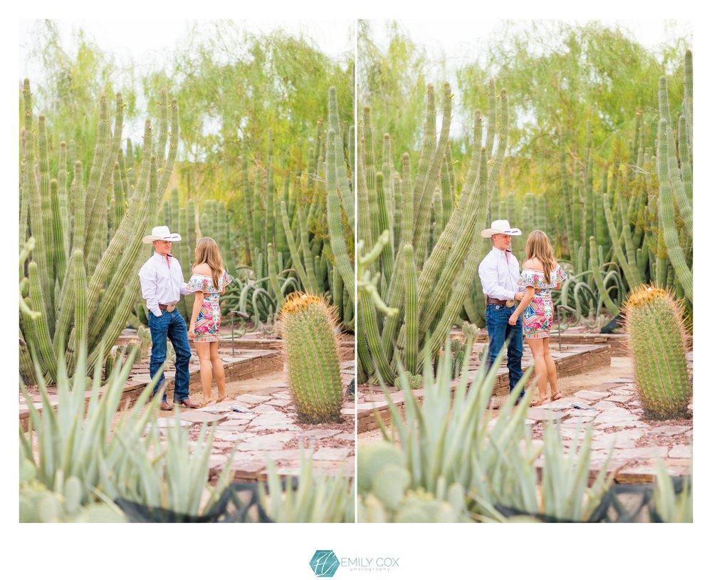 phoenix desert botanical garden surprise proposal - Phoenix Desert Botanical Garden