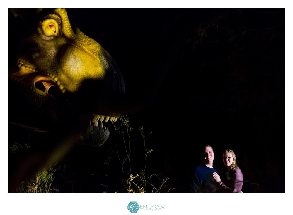 Phoenix Zoo Lights | After Dark Engagement Session